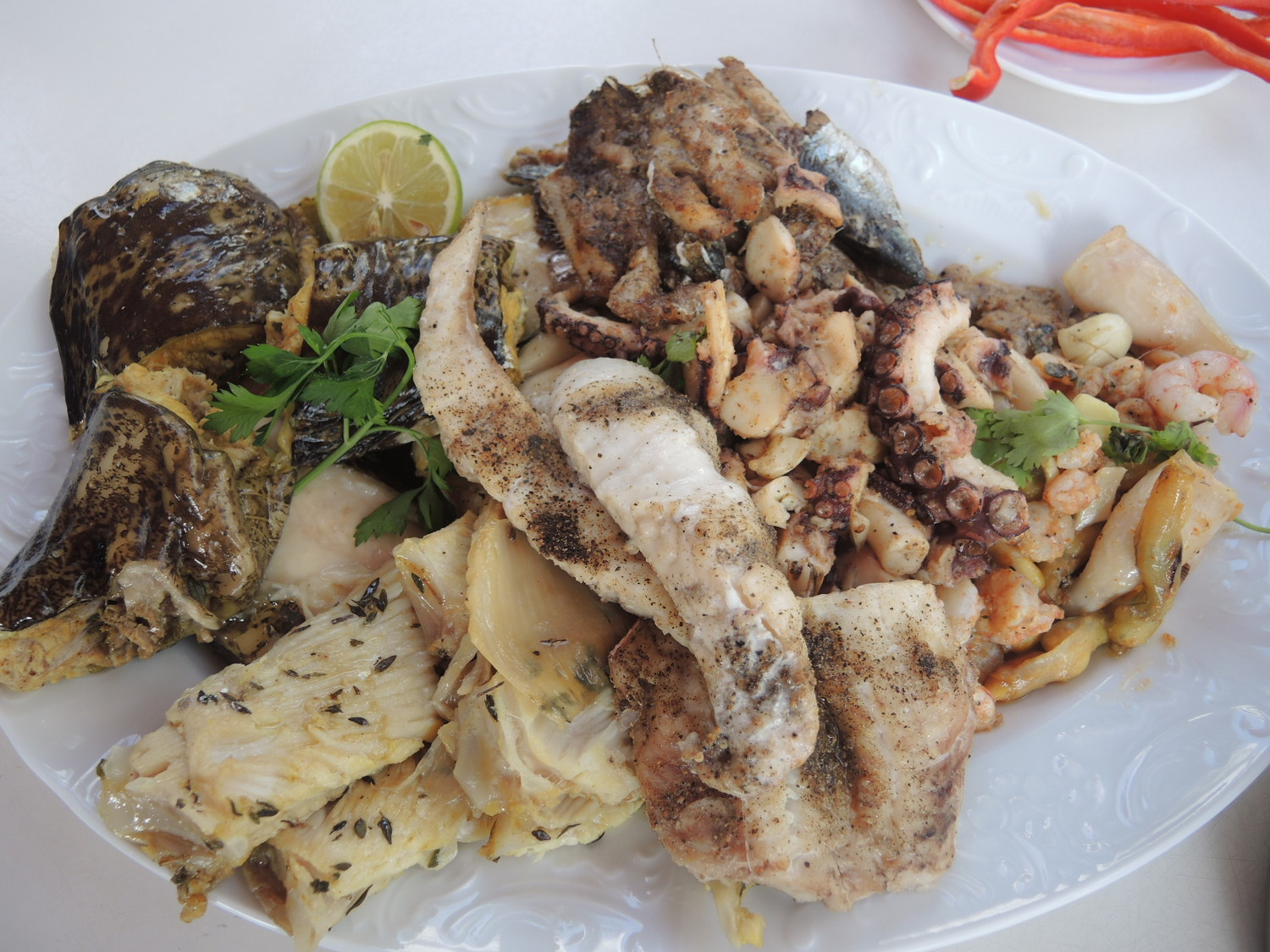 A fish plate in Agadir