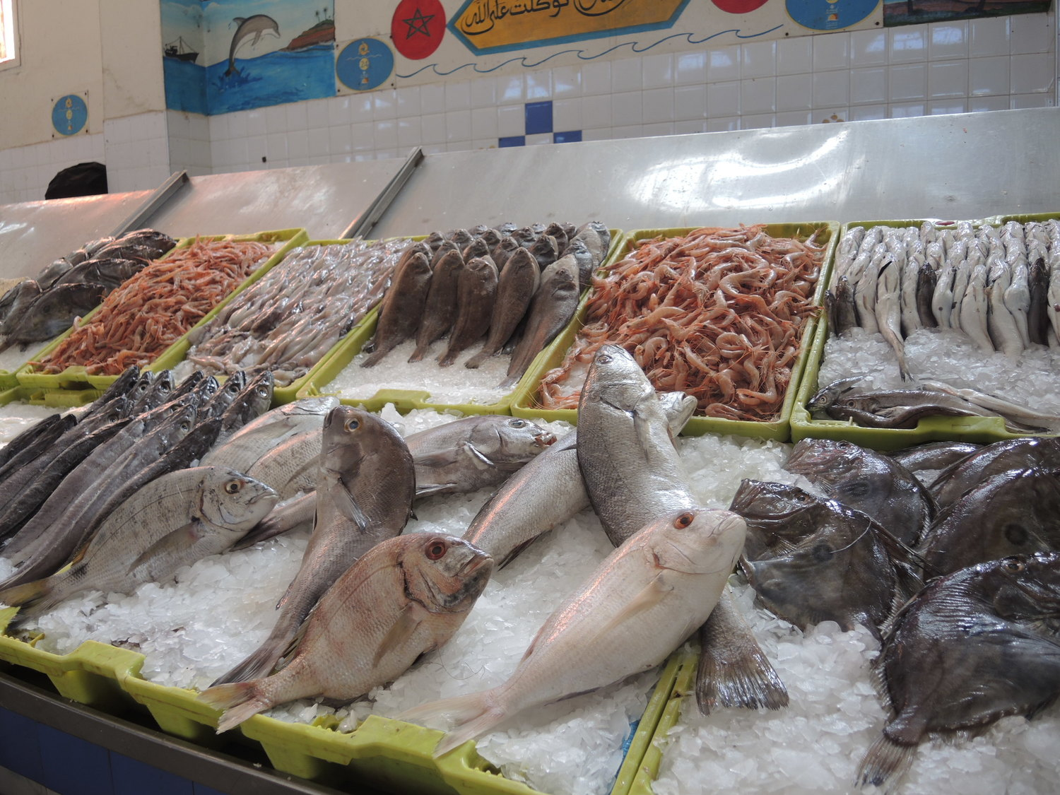 Fish in the El Massira market