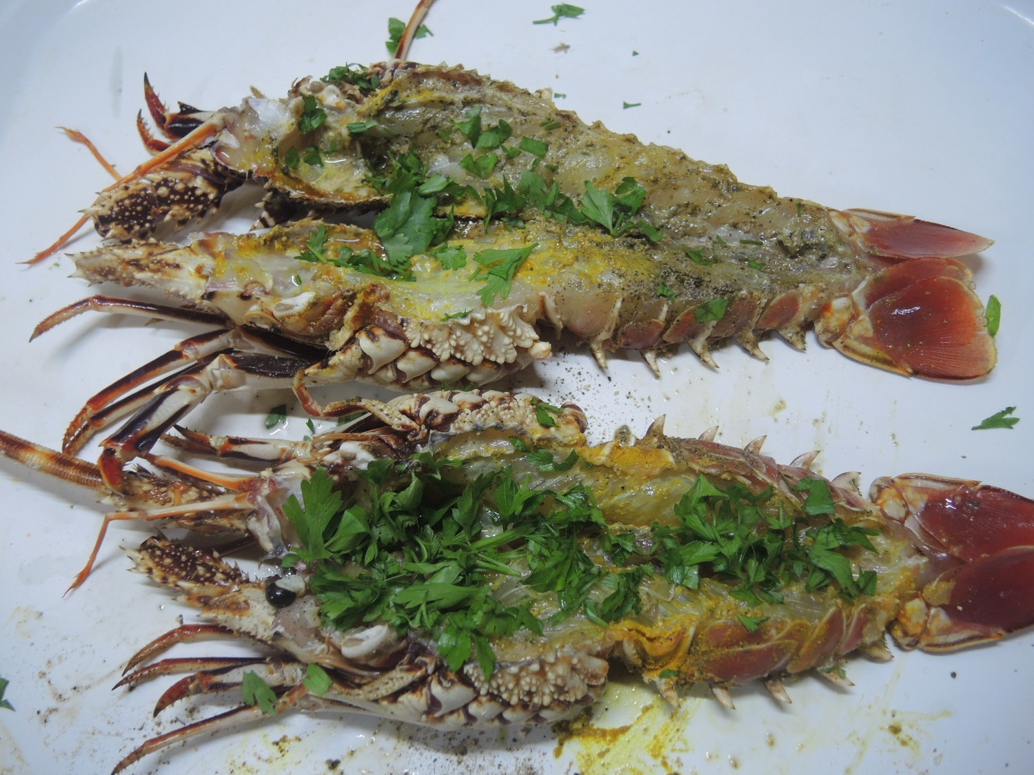 Langouste in the making