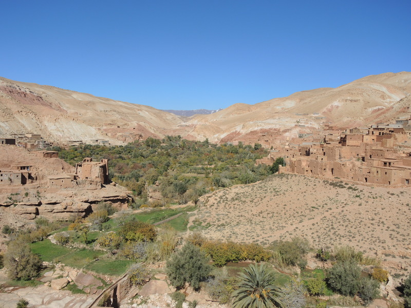 Oasis near Asif Ounila river in the Atlas Mountains