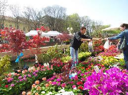 The flower fair