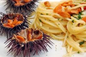 Spaghetti_with_sea_urchins