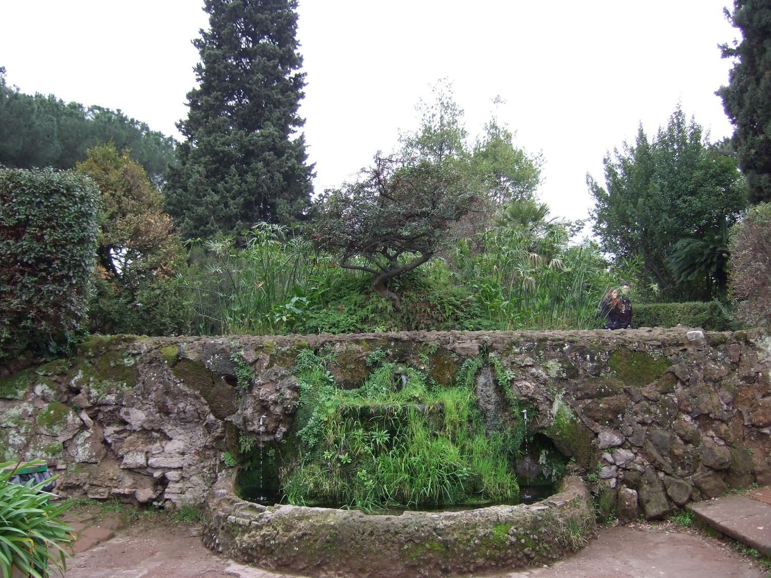 Nature in Rome. The gardens up the Palatine Hill