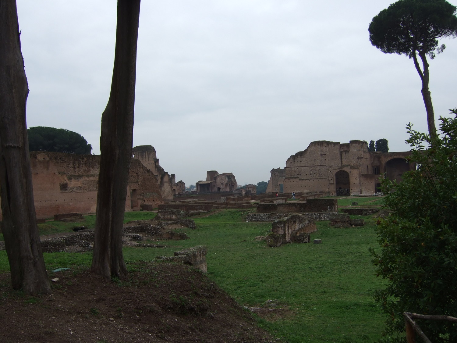 Trip to Rome. The ruins of the palaces on Palatine Hill