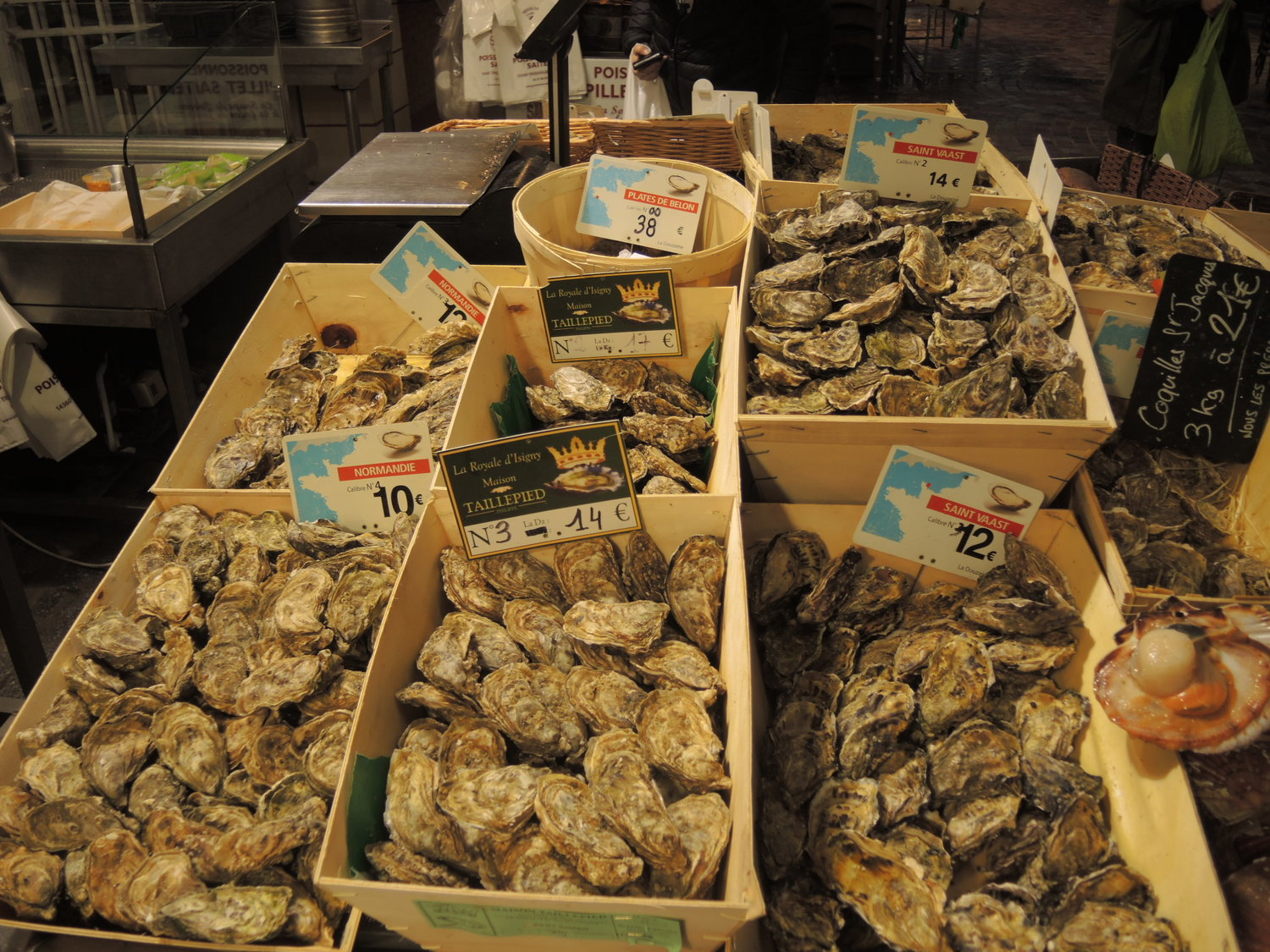 Food to eat in Normandy. Oysters